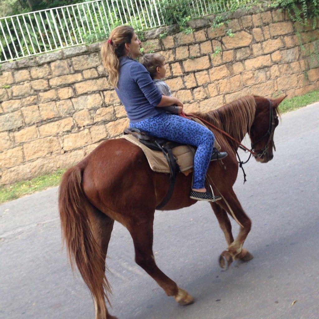 Cavalo com criança