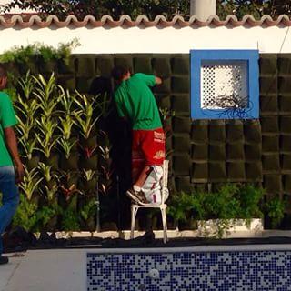 Bolsavivas são uma ótima dica para quem quer fazer um jardim vertical. São bolsas verdes, onde se pode cultivar plantas.