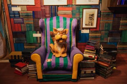 O bibliotecário Gato Pintado na biblioteca do Castelo